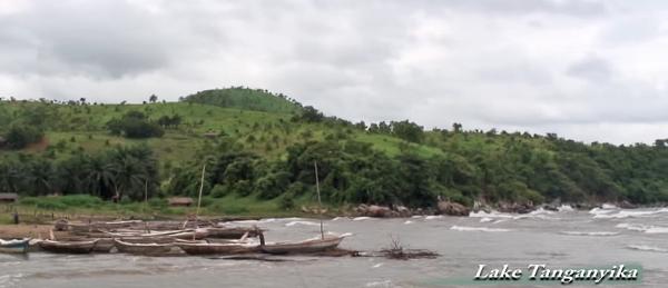 Uno scorcio delle rive del lago Tanganica